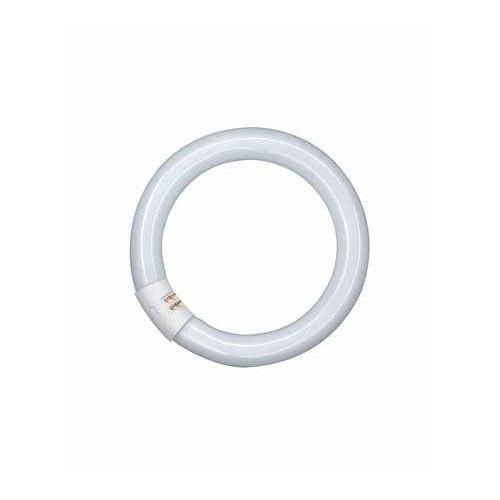 Tube fluorescent L 22W 827 C G10Q