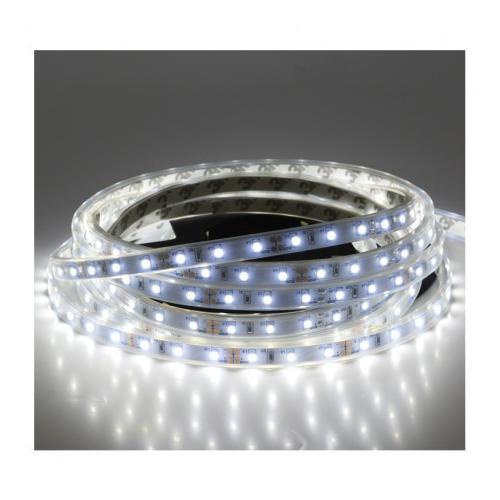 Bandeau LED 6000 K 5 m 60 LED/m 24W IP67