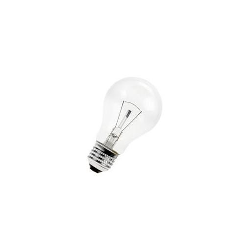 Ampoule Incandescente GLS E27 25W 12V 2700k